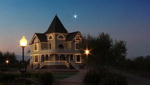 Christmas Light Hanging Concannon Vineyard